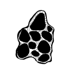 multicellar